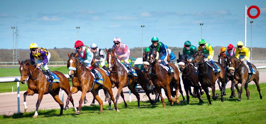 courses chevaux hippodrome lisieux