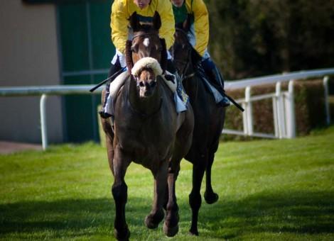 courses-hippodrome-lisieux-calvados-02